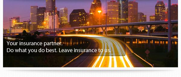 Alpha Omega Insurance Group announces website